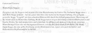 Winterpflanzen Für Balkonkästen : garten und terrasse winterbunte seggen tipps f r den alltag illustrierte artikel und texte ~ Indierocktalk.com Haus und Dekorationen