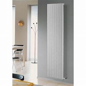 Radiateur Eau Chaude Vertical : riscaldamento a radiatori riscaldamento ~ Melissatoandfro.com Idées de Décoration