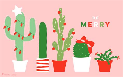 december  christmas cactus calendar wallpaper sarah