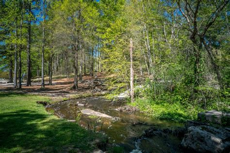 park with stream in zebulon nc