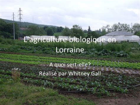 chambre agriculture lorraine le bio en lorraine organic agriculture in the lorraine