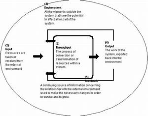 Systems Approach To Management  Theory  Lesson  U0026 Quiz