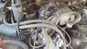 Vacuum Lines 1995 F150 4 9l