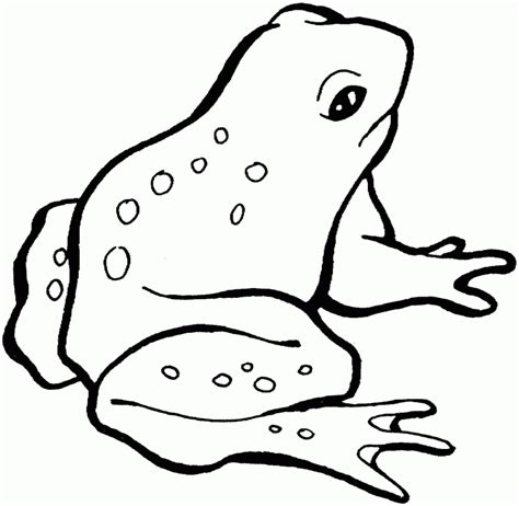 Free Printable Frog Coloring Pages Frog Coloring Sheets Az Coloring Pages