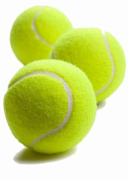 Tennis Ball Transparent Clipart Balls Dog Tennisbal
