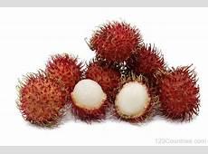 National Fruit Of Malaysia Rambutan 123Countriescom
