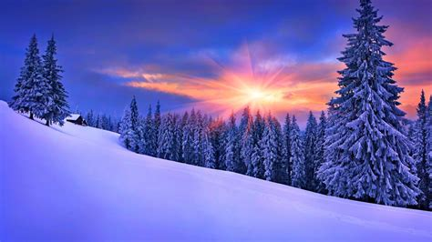 kostenloses winter sunshine wallpaper fuer desktop