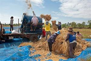 Allen U0026 39 S World  Threshing Time