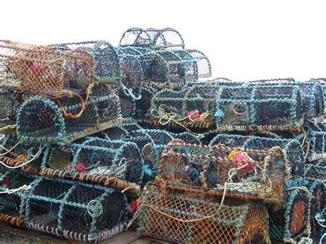 stock photo  crab pots freeimageslive