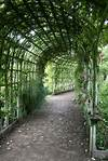 Plant-covered walkway   For the Garden(s)   Garden, Garden covered garden walkway
