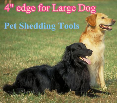 Shed Free Dogs by Free Shipping 4 Inch Style Pet Shedding Tools For