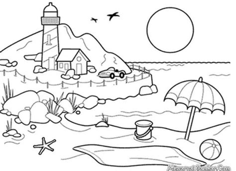 Sketsa Rumput Berwarna Sketsa Gambar Hewan Gajah Terbaru Home Design