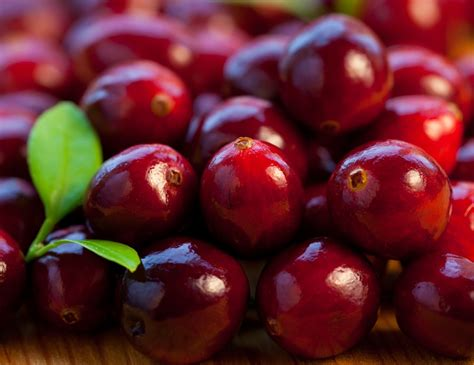 how to cranberries 5 homemade cranberry face packs