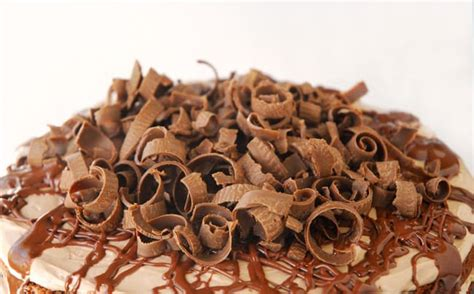 chocolate curls chocolate shavings cake www pixshark com images galleries with a bite