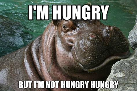 Hungry Memes - i m hungry but i m not hungry hungry hungry hippo