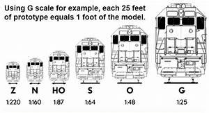 Scale Comparison Chart