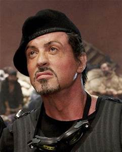 A-list in line for Sylvester Stallone film   Daily Star