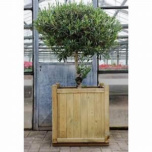Bac En Bois Pour Plantes : bac plantes en bois fsc vendome 138 litres jardipolys ~ Dailycaller-alerts.com Idées de Décoration
