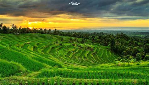 wallpaper pemandangan alam hd pin pemandangan alam indah