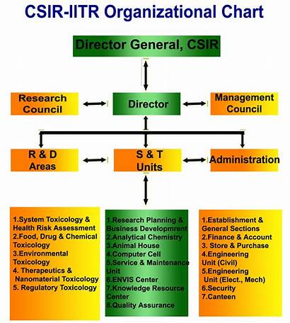 Structure Organisational Organizational