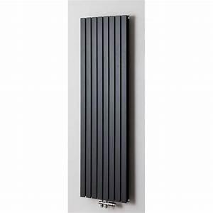 Radiateur Largeur 50 Cm : radiateurs d coratifs banio xandra couleur antracite ~ Premium-room.com Idées de Décoration