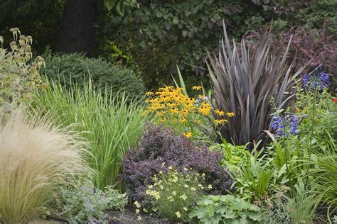 Farm Kitchen Ideas - 12 ornamental grasses that will stop traffic