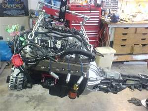 5 3 Ls With A T5   Yes You Can  Here It Is