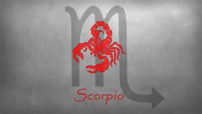 Scorpio Zodiac Sign Signs Wallpapers Background Desktop