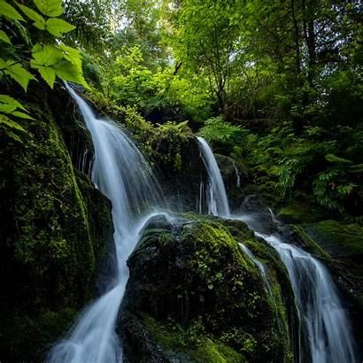 Waterfall Stones Stream Ipad Branches Plants Parallax