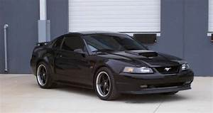99-04 GT Hood Scoop | Mustang Forums at StangNet