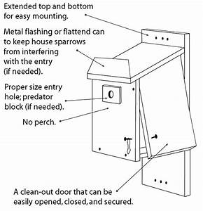 Kaepa: Audubon bluebird house plans