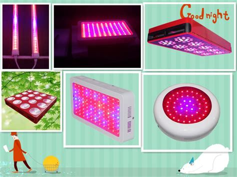 growing vegetables indoors with led lights led lights for growing vegetables 300watt full cycle led