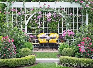 A pergola covered in climbing roses and clematis shades an