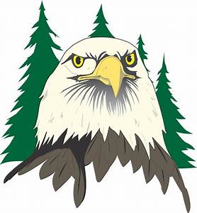Cartoon Eagle Head Clip Art Vector Online Royalty Free on ...