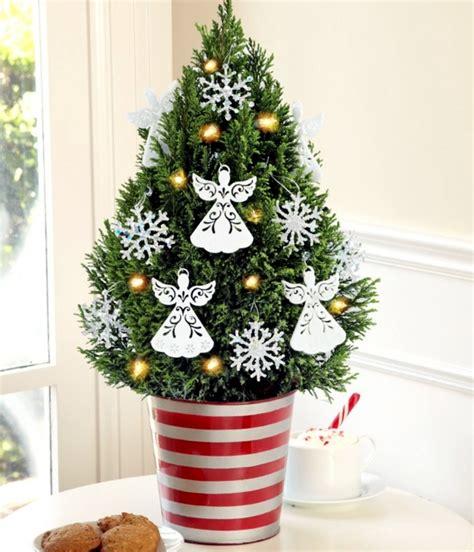 40 Small Christmas Trees  Christmas Celebration All