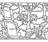 Coloring Rainforest Getdrawings sketch template