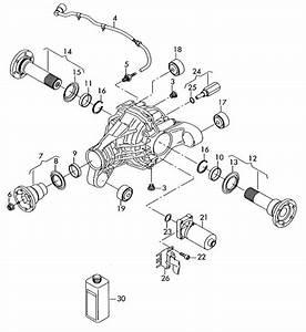 2009 Audi Q7 Bonded Rubber Mounting  Jsm  Jww  Jwv