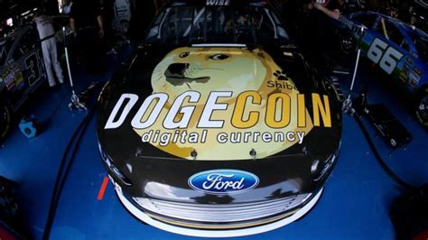 forget bitcoin  dogecoin  wild doge wow