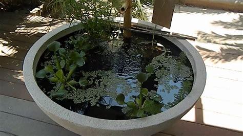 Aquascape Patio Pond by Aquascape 30 Gallon Patio Pond