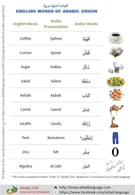 Best 25+ Arabic Words Ideas On Pinterest  Learning Arabic, Learning Arabic Language And Arabic