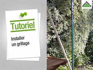 Grillage Soudé En Rouleau : grillage en rouleau ~ Dailycaller-alerts.com Idées de Décoration