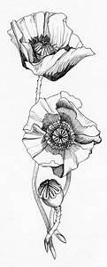 Mohnblumen Tattoo, Mohnblumen and Kalifornien on Pinterest