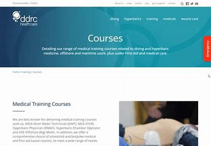 Example Website Training Web Examples Ultimate Guide