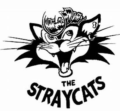 Cats Stray Cat Rockabilly Band Rules Rock