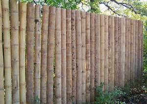 Natürlicher Sichtschutz Garten : bambus sichtschutz sch n und ko freundlich ~ Michelbontemps.com Haus und Dekorationen
