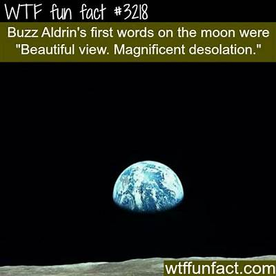 Buzz Aldrin's first words on the moon - WTF fun facts