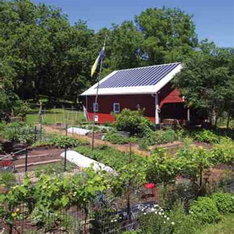 Self Sufficient Backyard by A Plan For Food Self Sufficiency Modern Homesteading