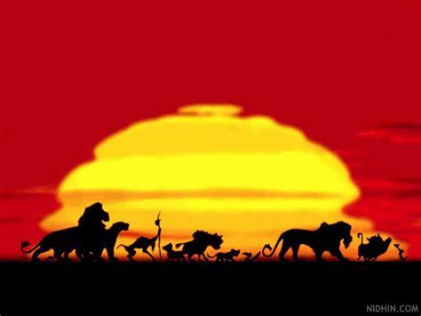 top collection lion king wallpapers