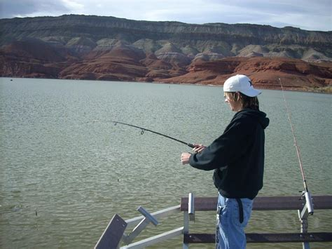 bighorn lake fishing regulations bighorn canyon national