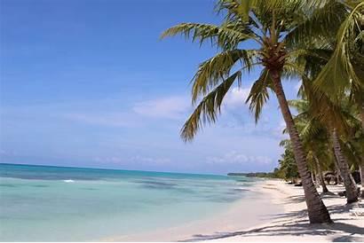 Tropical Island Unsplash Medium